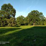 Kladruby nad Labem anglický park